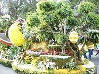 Flower Festival Float 2